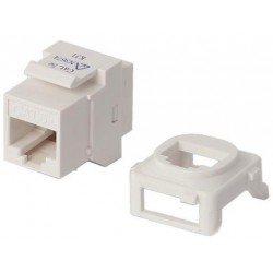 Wall Plate Insert - CAT5/6 Ethernet