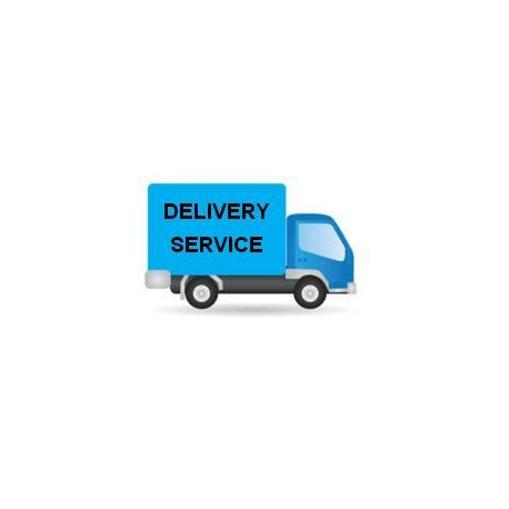 Delivery Service for Large Parcel