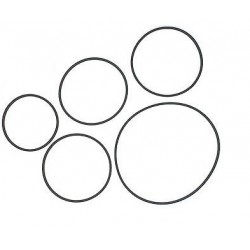 Belt - Square 1.0x1.0mm (Diameter 69mm / Length 216mm)